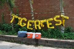 TigerFest!
